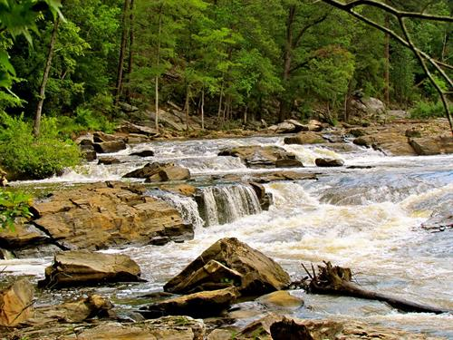 Hike the Sweetwater Creek Red Trail - Outings